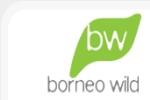 Borneo Wild