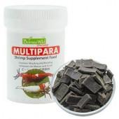 Multipara Borneo Wild