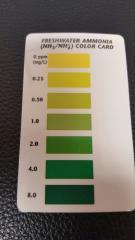 API Test Kit Ammonia Card