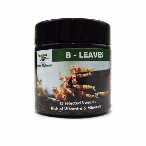 B Leaves - Tantora