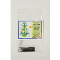 Plant Anchors (10 pack)
