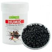 Humic - Borneo Wild